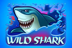 play fortuna — Wild Shark