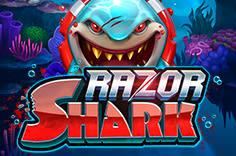 play fortuna — Razor Shark