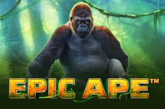 play fortuna — Epic Ape