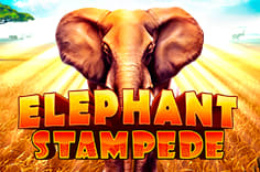 play fortuna — Elephant Stampede